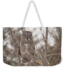 Great Grey Owl Weekender Tote Bag