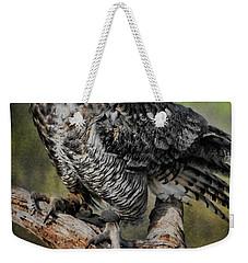 Great Horned Owl On Branch Weekender Tote Bag by Deborah Benoit