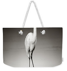 Great White Egret On Hippo Weekender Tote Bag by Johan Swanepoel