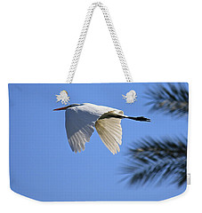 Weekender Tote Bag featuring the photograph Great White In Flight by Penny Meyers