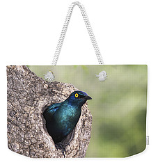 Greater Blue-eared Glossy-starling Weekender Tote Bag by Andrew Schoeman