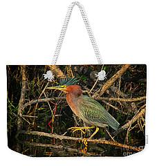 Green Heron Basking In Sunlight Weekender Tote Bag
