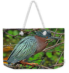 Green Heron Breeding Colors Weekender Tote Bag