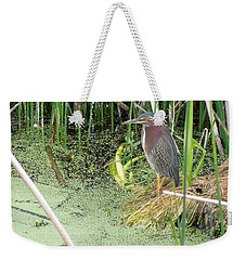 Weekender Tote Bag featuring the pyrography Green Heron by Ron Davidson
