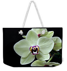 Green Hybrid Phalaenopsis Flower With A Red Wine Center Weekender Tote Bag