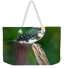 Green Kingfisher Chloroceryle Weekender Tote Bag by Panoramic Images