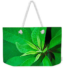 Green Weekender Tote Bag by Ludwig Keck