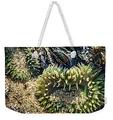 Green Sea Anemone Weekender Tote Bag