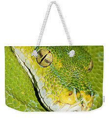 Weekender Tote Bag featuring the photograph Green Tree Python #2 by Judy Whitton