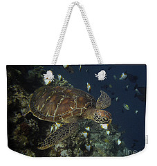 Weekender Tote Bag featuring the photograph Hawksbill Turtle by Sergey Lukashin