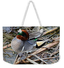 Weekender Tote Bag featuring the photograph Green-winged Teal by Debra Martz