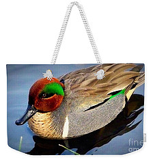 Green Winged Teal  Duck  Weekender Tote Bag