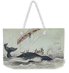 Greenland Whale Book Illustration Engraved By William Home Lizars  Weekender Tote Bag