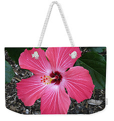 Weekender Tote Bag featuring the photograph Greetings From Florida by Oksana Semenchenko
