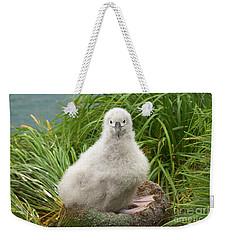 Grey-headed Albatross Chick Weekender Tote Bag by Yva Momatiuk John Eastcott