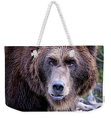 Weekender Tote Bag featuring the photograph Grizzly by Athena Mckinzie
