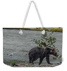 Grizzly Bear Late September 5 Weekender Tote Bag