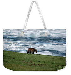 Weekender Tote Bag featuring the photograph Grizzly Bear On The Shoreline Of Frozen Lake Yellowstone by Shawn O'Brien
