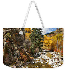 Weekender Tote Bag featuring the photograph Grizzly Creek Cottonwoods Vertical by Jeremy Rhoades