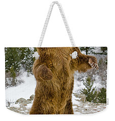 Grizzly Standing Weekender Tote Bag by Jerry Fornarotto