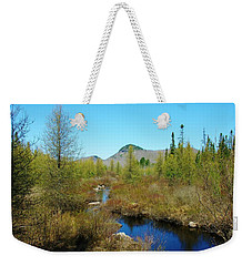 Weekender Tote Bag featuring the photograph Groton State Forest Moose Country by Sherman Perry