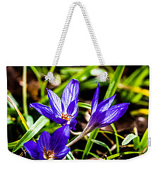 Weekender Tote Bag featuring the photograph Hocus Crocus by Dee Dee  Whittle