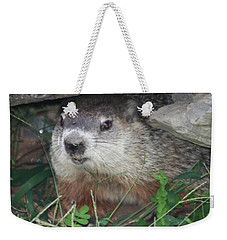 Groundhog Hiding In His Cave Weekender Tote Bag by John Telfer