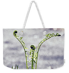 Weekender Tote Bag featuring the photograph Growing  by Kerri Farley