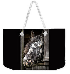 Guard Horse-what's The Password? Weekender Tote Bag