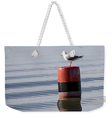 Gull Weekender Tote Bag by Spikey Mouse Photography