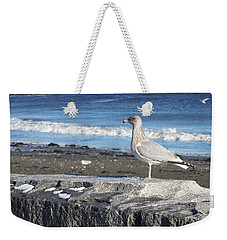 Weekender Tote Bag featuring the photograph Seagull  by Eunice Miller