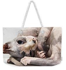 Hairless Cat Weekender Tote Bag