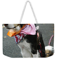 Weekender Tote Bag featuring the photograph Haley The Wonder Dog by Emmy Marie Vickers