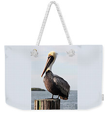 Handsome Brown Pelican Weekender Tote Bag by Carol Groenen