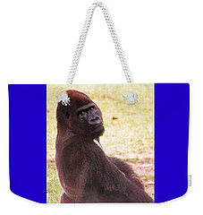 Weekender Tote Bag featuring the photograph Handsome Gorilla by Belinda Lee