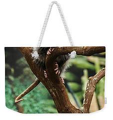Hang In There Baby Weekender Tote Bag
