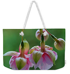 Weekender Tote Bag featuring the photograph Hanging Fuschia by Debra Martz