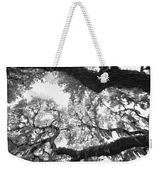 Weekender Tote Bag featuring the photograph Hanging Moss by Bradley R Youngberg