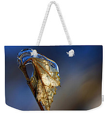 Weekender Tote Bag featuring the photograph The Last Leaf  by Debbie Oppermann
