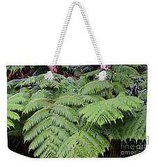 Hapu'u Hawaiian Fern Weekender Tote Bag by Lehua Pekelo-Stearns