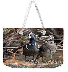 Weekender Tote Bag featuring the photograph Harlequin Pair by Jack Bell