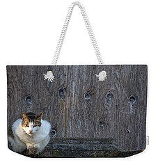 Weekender Tote Bag featuring the photograph Harlequin Rustic by Chriss Pagani
