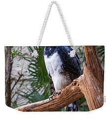 Harpy Eagle Weekender Tote Bag by Ken Stanback