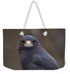 Harris Hawk Weekender Tote Bag