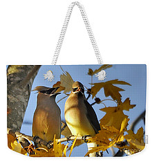 Weekender Tote Bag featuring the photograph It Is Now Or Never by Nava Thompson