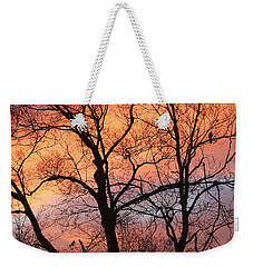 Hawk At Sunrise Weekender Tote Bag