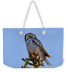 Hawk Owl Square Weekender Tote Bag