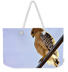 Weekender Tote Bag featuring the photograph Hawkeye by AJ  Schibig