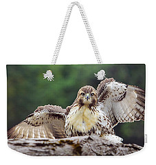 Hawkeyes Weekender Tote Bag