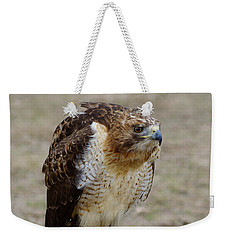 Hawkish Weekender Tote Bag by Darrell Clakley